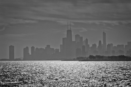 chicago skyline montrose harbor animalia project susan ask transit to trails
