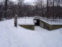 Des Plaines River Trail underpass Dam No 4 Woods Devon Ave. animalia project susan ask