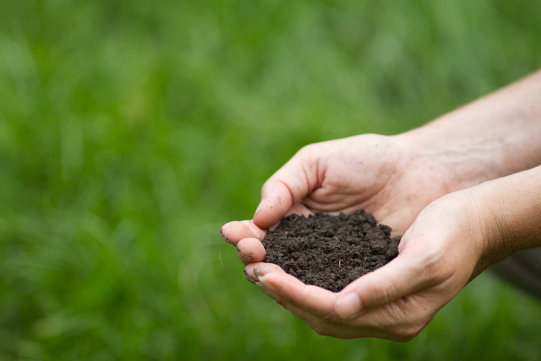 soil hands animalia project joe mazza brave lux carbon sequestration climate change