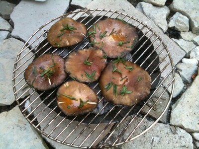 grilled mushrooms for a vegan cookout