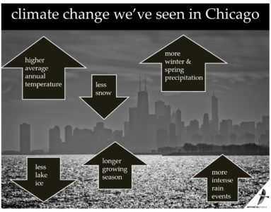 climate change in chicago graphic