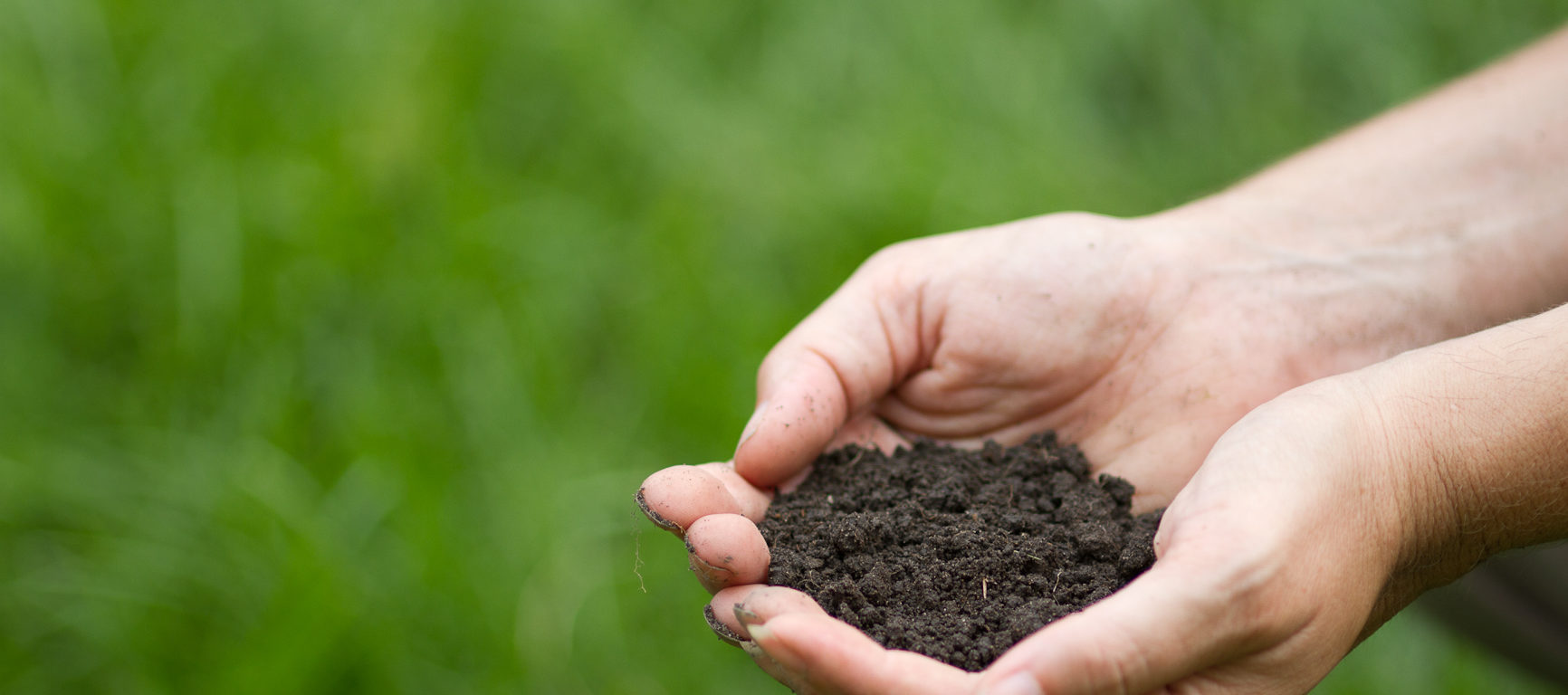 soil (photo: joe mazza/brave lux)