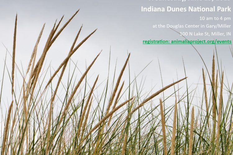 climate clinic at indiana dunes